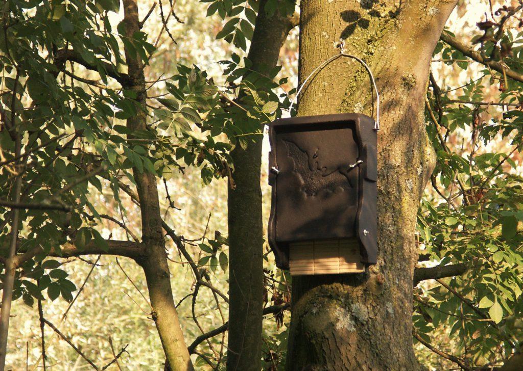 Nieuwe vleermuiskasten voor het Heempark