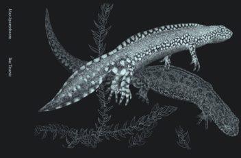 Salamanders in Art and Science
