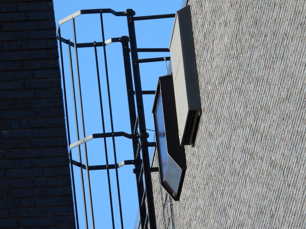 Vleermuiskasten aan de Sporthogeschool