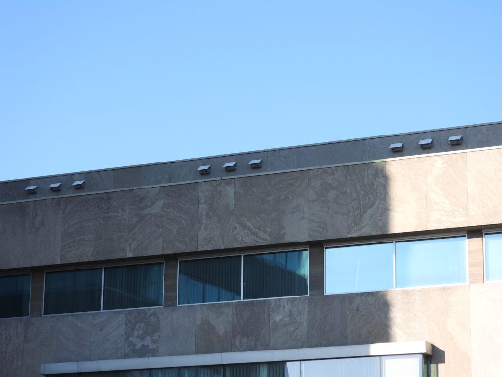 Eindhovens stadhuis gastvrij voor gierzwaluwen en vleermuizen